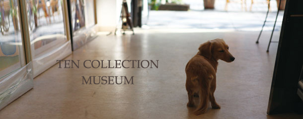 TEN COLLECTION MUSEUM